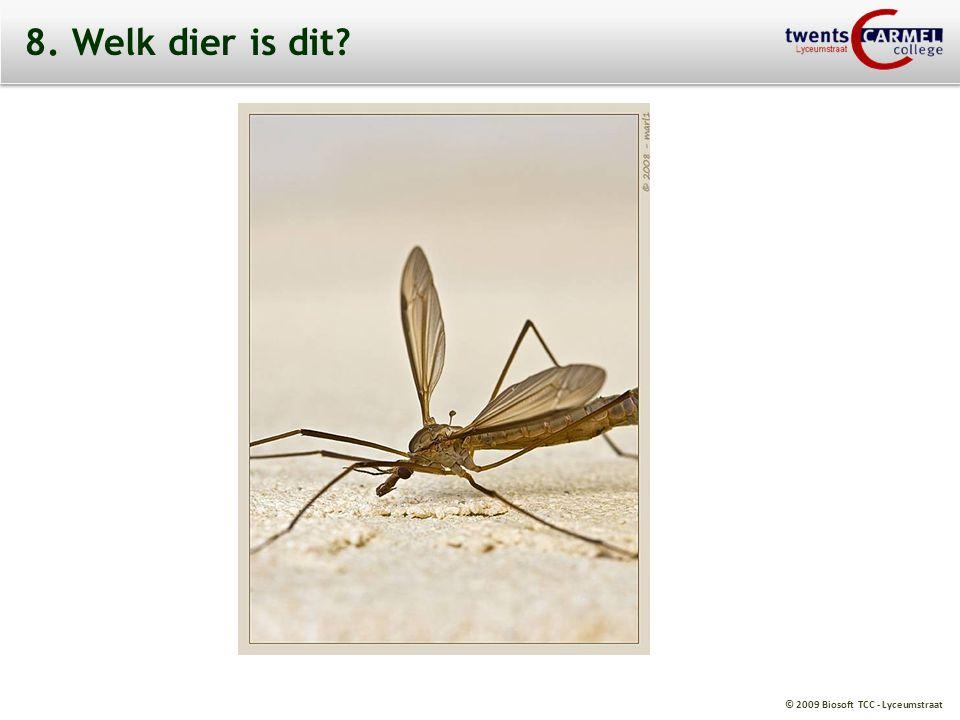 © 2009 Biosoft TCC - Lyceumstraat 8. Welk dier is dit?
