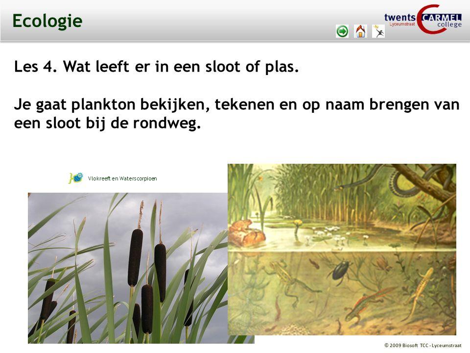 © 2009 Biosoft TCC - Lyceumstraat Ecologie Les 4. Wat leeft er in een sloot of plas. Je gaat plankton bekijken, tekenen en op naam brengen van een slo