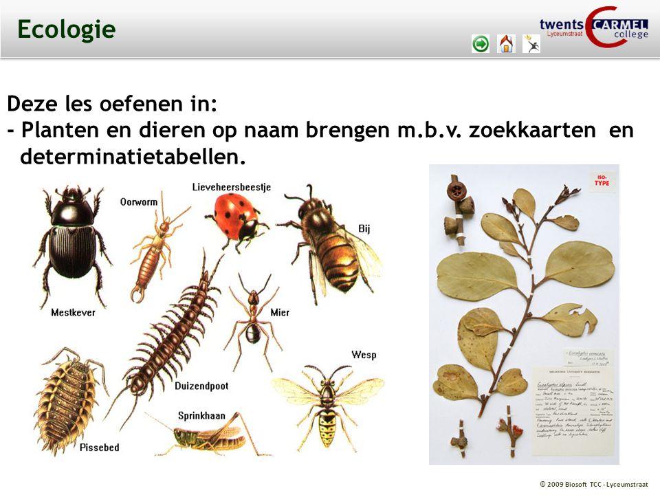 © 2009 Biosoft TCC - Lyceumstraat Ecologie Deze les oefenen in: - Planten en dieren op naam brengen m.b.v. zoekkaarten en determinatietabellen.