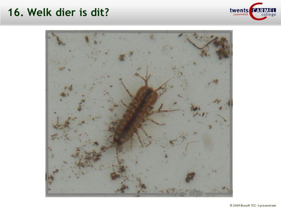 © 2009 Biosoft TCC - Lyceumstraat 16. Welk dier is dit?