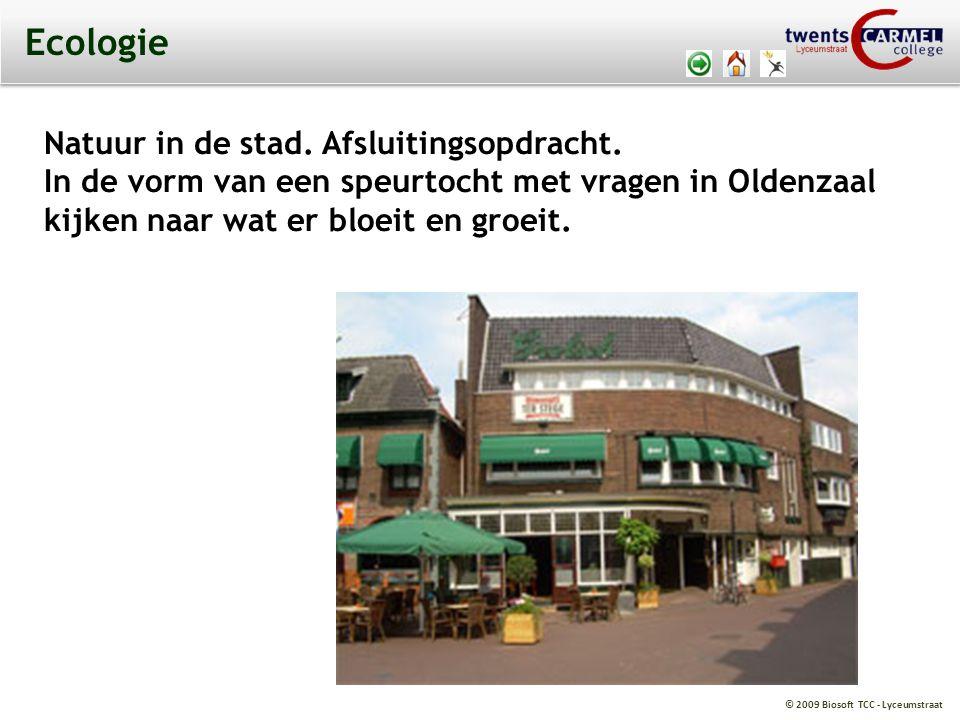 © 2009 Biosoft TCC - Lyceumstraat Ecologie Natuur in de stad. Afsluitingsopdracht. In de vorm van een speurtocht met vragen in Oldenzaal kijken naar w