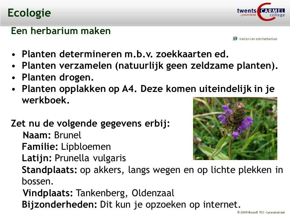 © 2009 Biosoft TCC - Lyceumstraat Ecologie Een herbarium maken Planten determineren m.b.v. zoekkaarten ed. Planten verzamelen (natuurlijk geen zeldzam