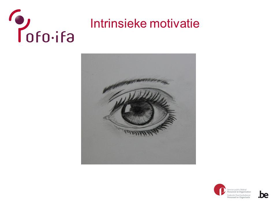 Intrinsieke motivatie - 3 behoeften Deci & Ryan, 2000