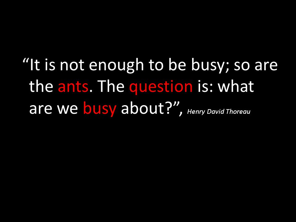 """It is not enough to be busy; so are the ants. The question is: what are we busy about?"", Henry David Thoreau"