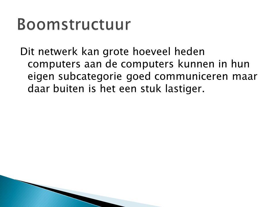 Dit netwerk kan grote hoeveel heden computers aan de computers kunnen in hun eigen subcategorie goed communiceren maar daar buiten is het een stuk las