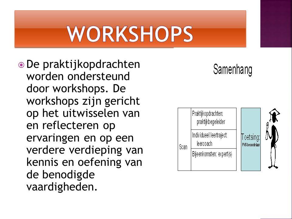  De praktijkopdrachten worden ondersteund door workshops. De workshops zijn gericht op het uitwisselen van en reflecteren op ervaringen en op een ver