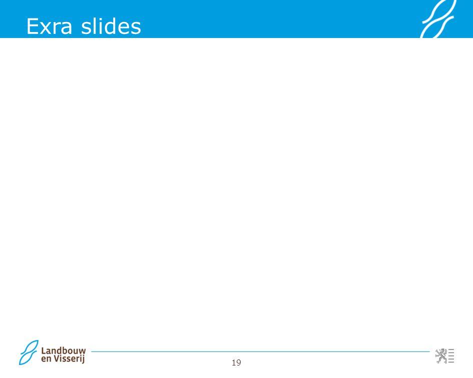 19 Exra slides