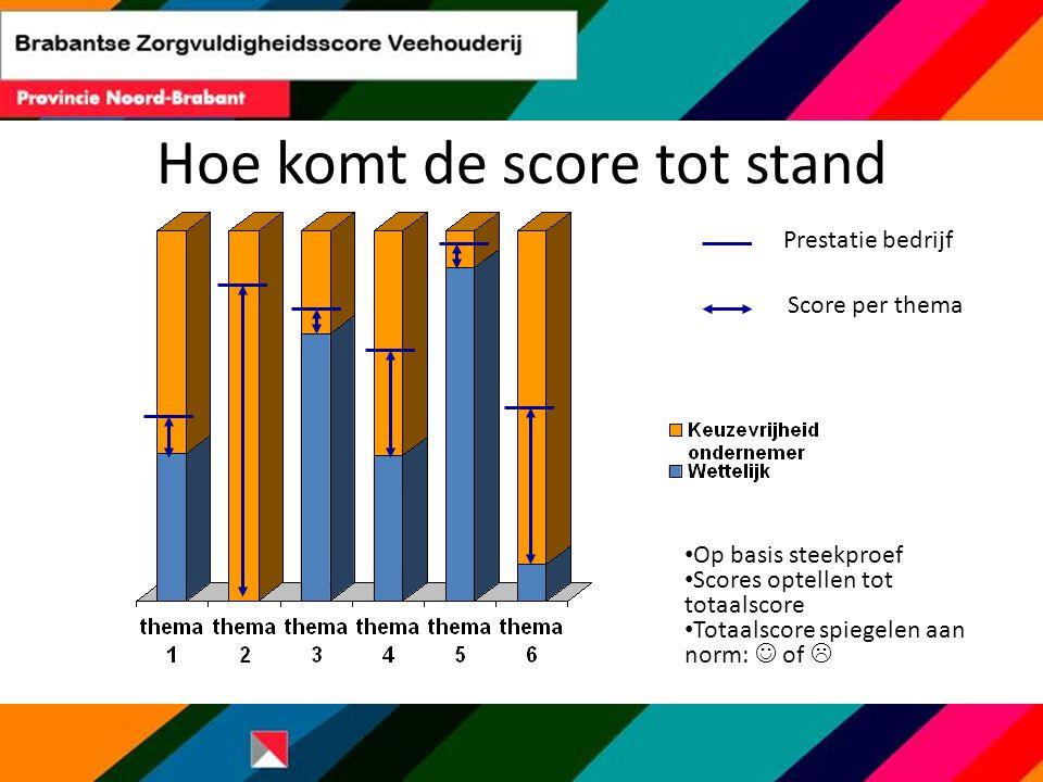 Hoe komt de score tot stand Op basis steekproef Scores optellen tot totaalscore Totaalscore spiegelen aan norm: of  Prestatie bedrijf Score per thema