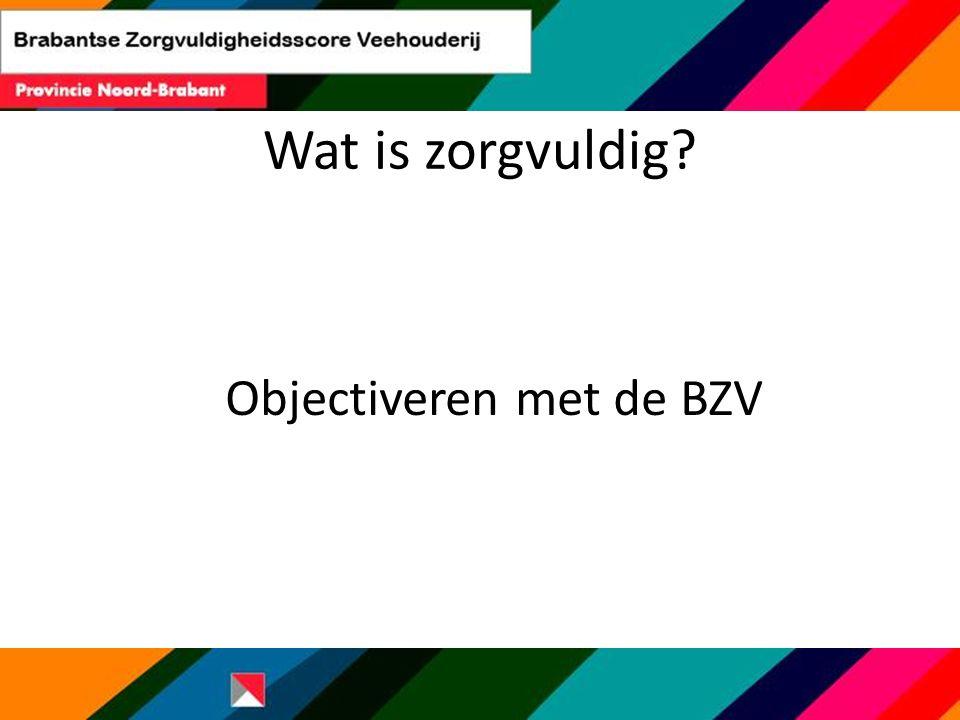 Objectiveren met de BZV Wat is zorgvuldig