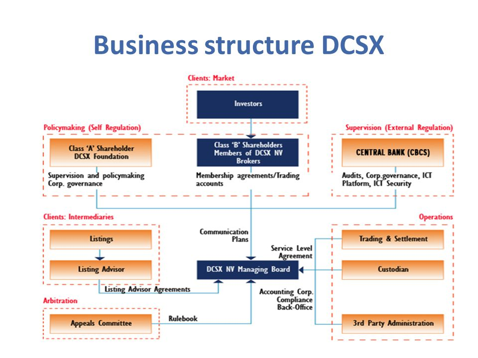 Business structure DCSX