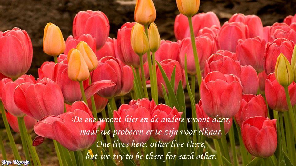 Wat is er mooier zonder te klagen, elkaar te steunen zonder te vragen.