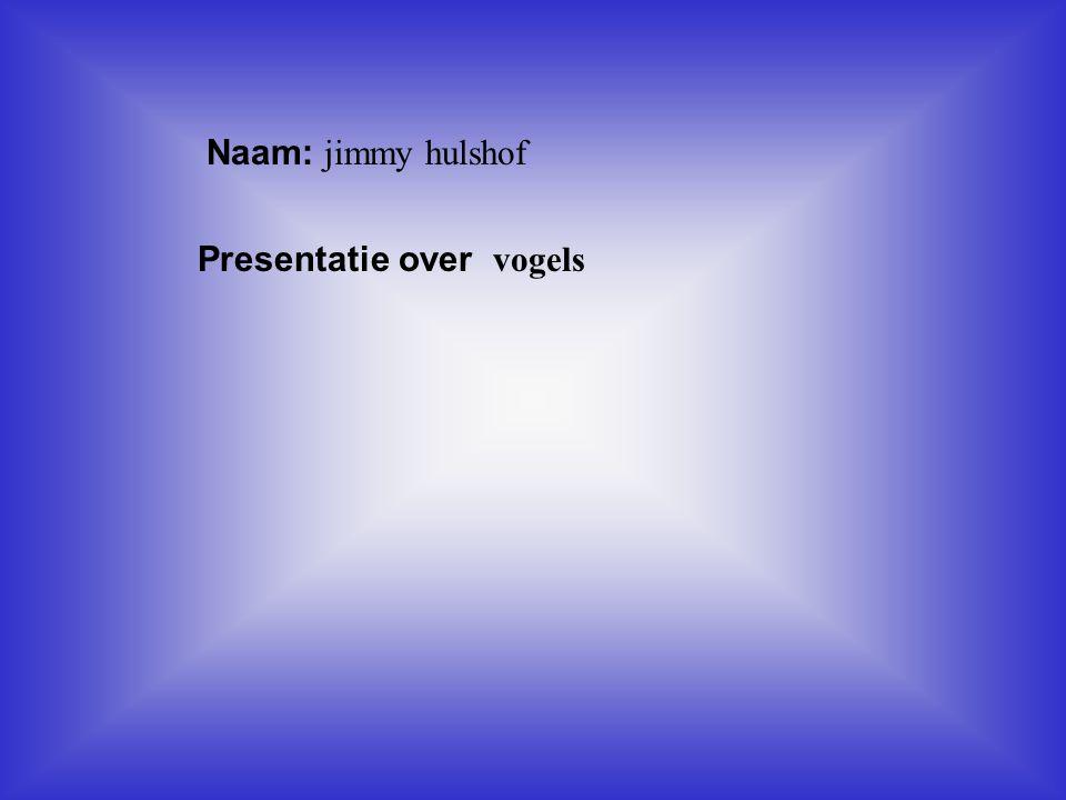 Naam: jimmy hulshof Presentatie over vogels Klik op Naam .