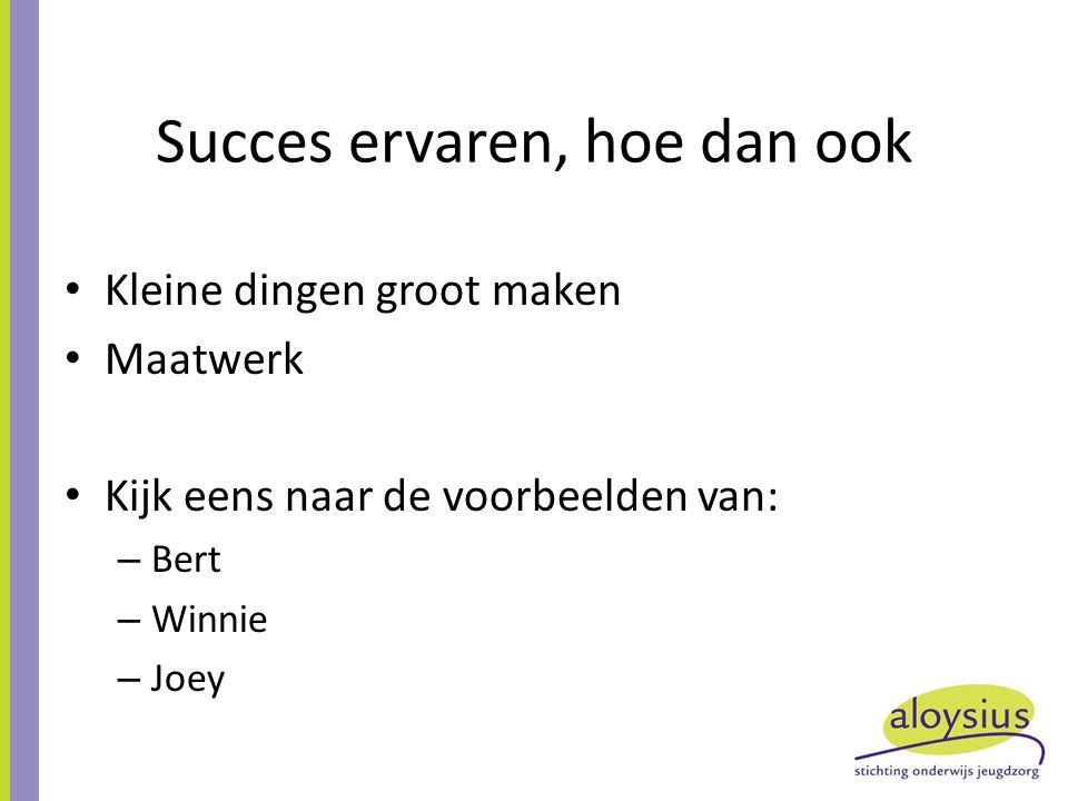 Succes ervaren, hoe dan ook Kleine dingen groot maken Maatwerk Kijk eens naar de voorbeelden van: – Bert – Winnie – Joey