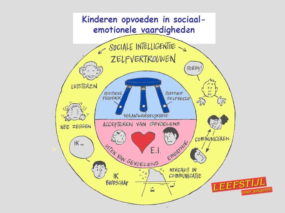 Kinderen opvoeden in sociaal- emotionele vaardigheden
