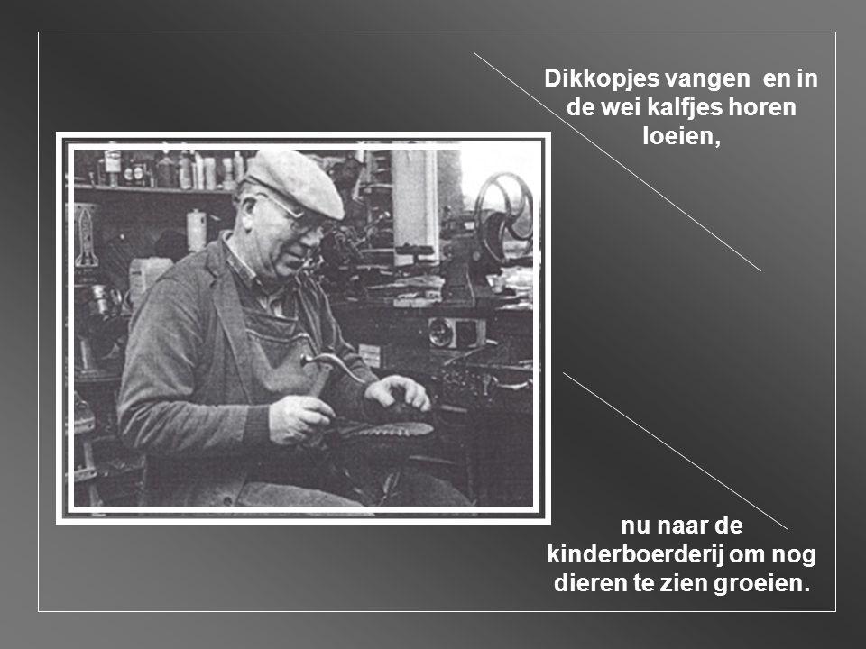 Ons taaltje was pittig, het zuiverst dialect, nu Algemeen Beschaafd Nederlands zo hoort het, anders kom je nergens terecht.