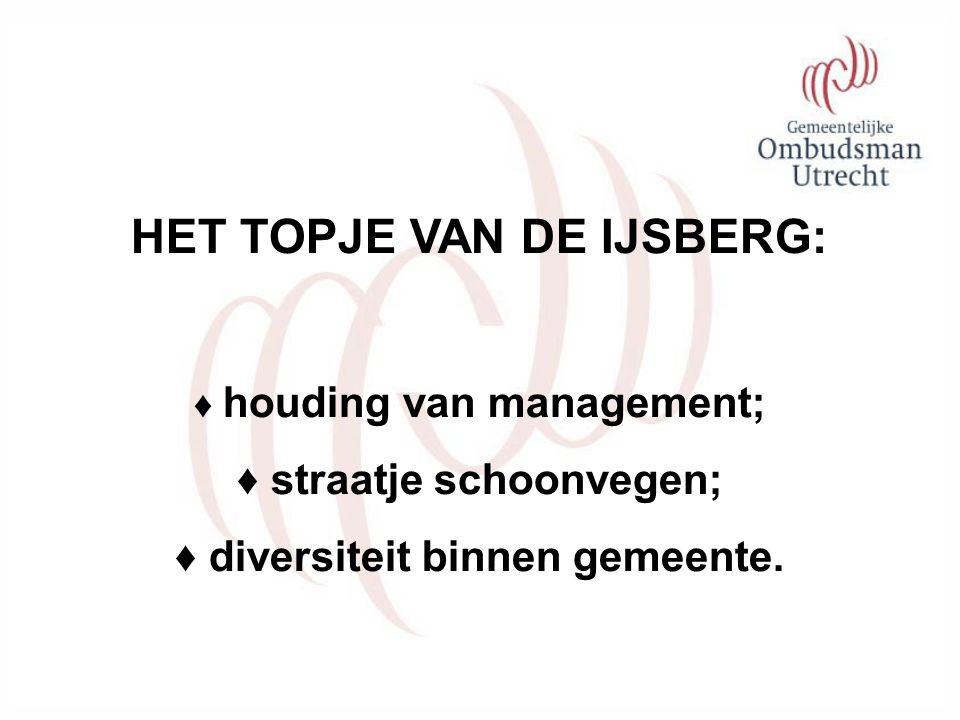 HET TOPJE VAN DE IJSBERG: ♦ houding van management; ♦ straatje schoonvegen; ♦ diversiteit binnen gemeente.