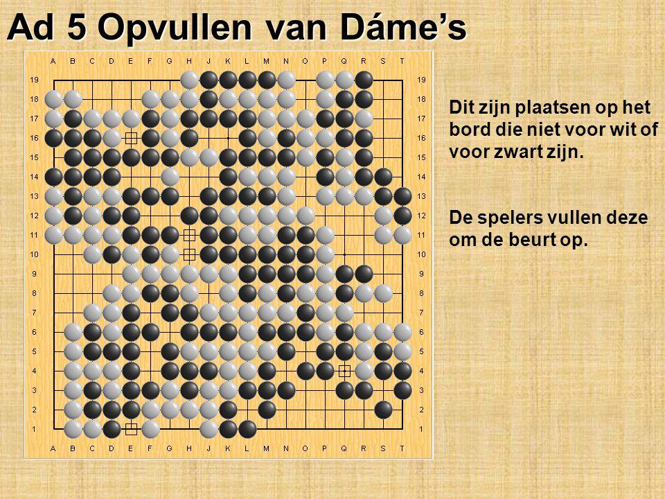 Ad 5 Opvullen van Dáme's Dit zijn plaatsen op het bord die niet voor wit of voor zwart zijn.