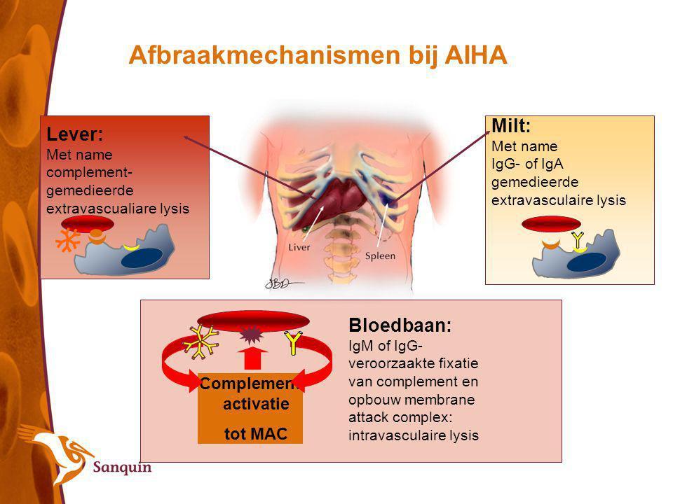 Lever: Met name complement- gemedieerde extravascualiare lysis Milt: Met name IgG- of IgA gemedieerde extravasculaire lysis Afbraakmechanismen bij AIH