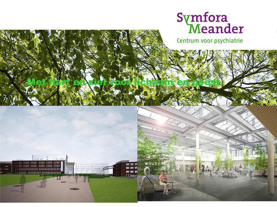 SymforaMeander Vanaf oktober 2011 oprichting van de VOF vanuit MeanderMc en GGZ Centraal.
