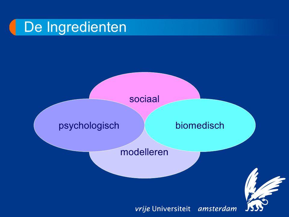 De Ingredienten modelleren sociaal biomedischpsychologisch