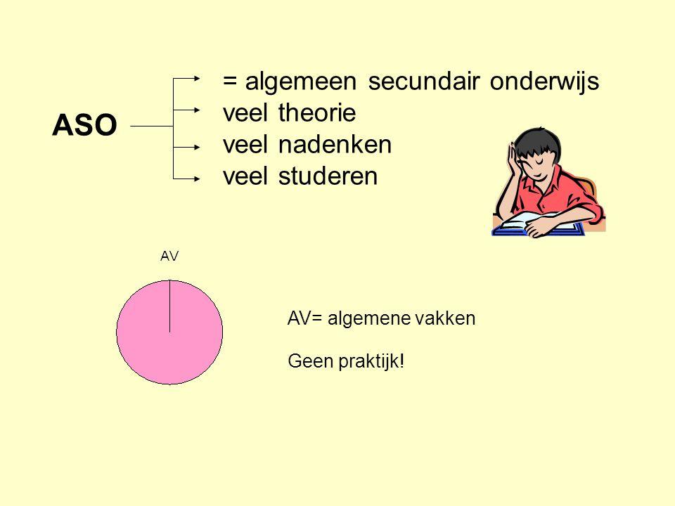 = algemeen secundair onderwijs veel theorie veel nadenken veel studeren ASO AV= algemene vakken Geen praktijk!