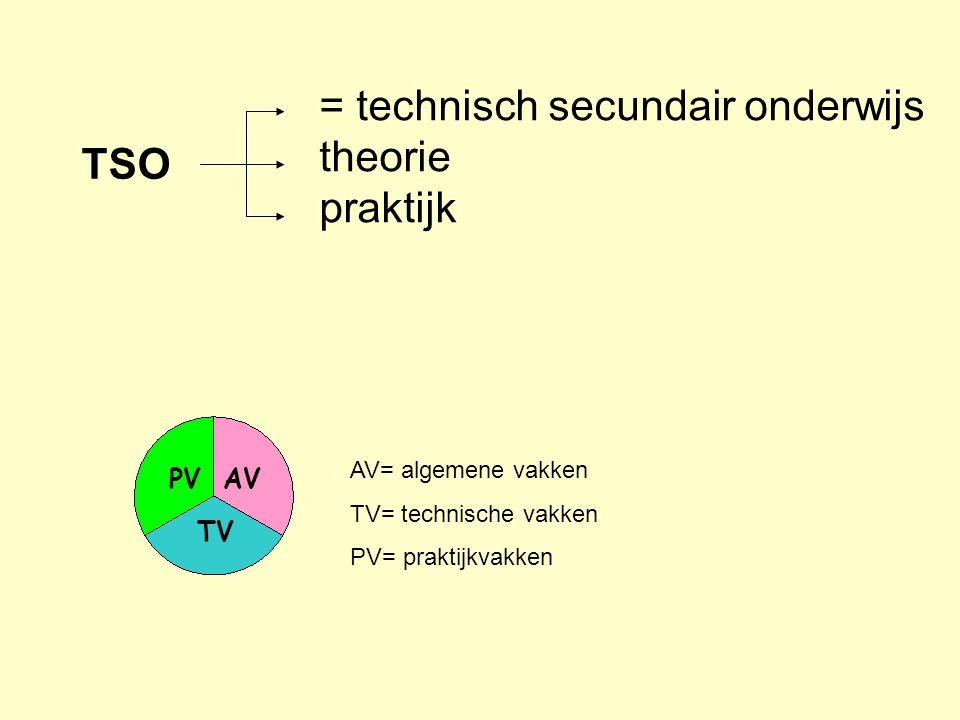 AV= algemene vakken TV= technische vakken PV= praktijkvakken AVPV TV = technisch secundair onderwijs theorie praktijk TSO