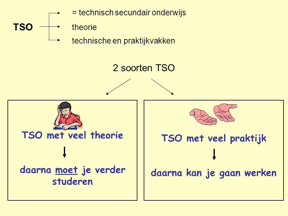 2 soorten TSO theorie TSO met veel praktijk daarna kan je gaan werken TSO met veel theorie daarna moet je verder studeren TSO = technisch secundair on