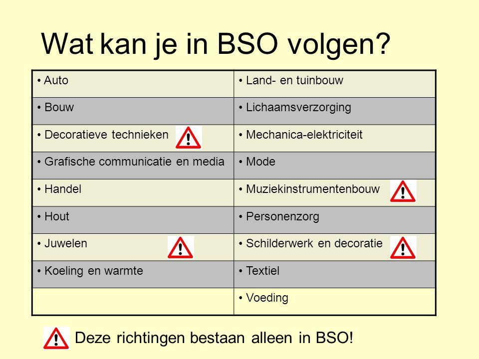 Wat kan je in BSO volgen? Auto Land- en tuinbouw Bouw Lichaamsverzorging Decoratieve technieken Mechanica-elektriciteit Grafische communicatie en medi