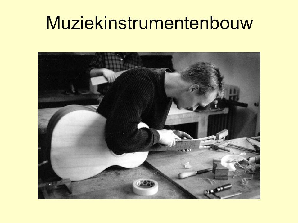 Muziekinstrumentenbouw