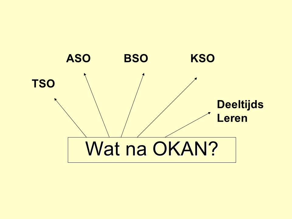 Wat na OKAN? Deeltijds Leren TSO ASOBSOKSO