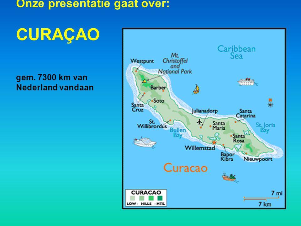 Onze presentatie gaat over: CURAÇAO gem. 7300 km van Nederland vandaan
