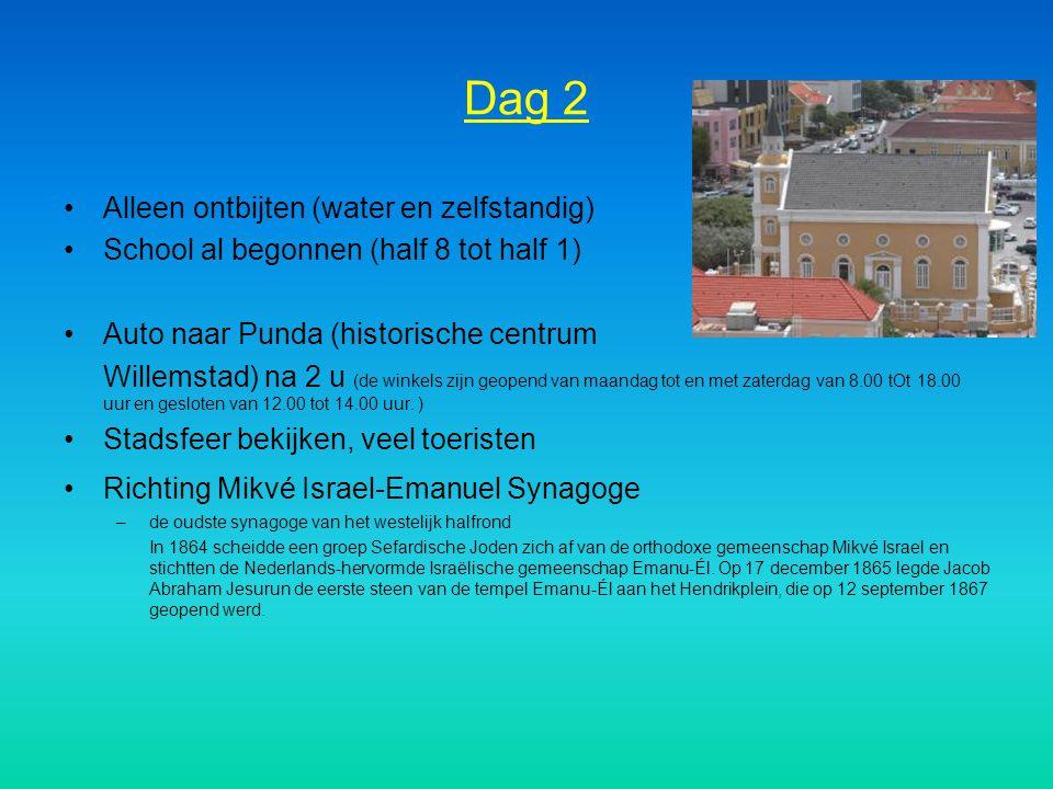 Dag 2 Alleen ontbijten (water en zelfstandig) School al begonnen (half 8 tot half 1) Auto naar Punda (historische centrum Willemstad) na 2 u (de winke