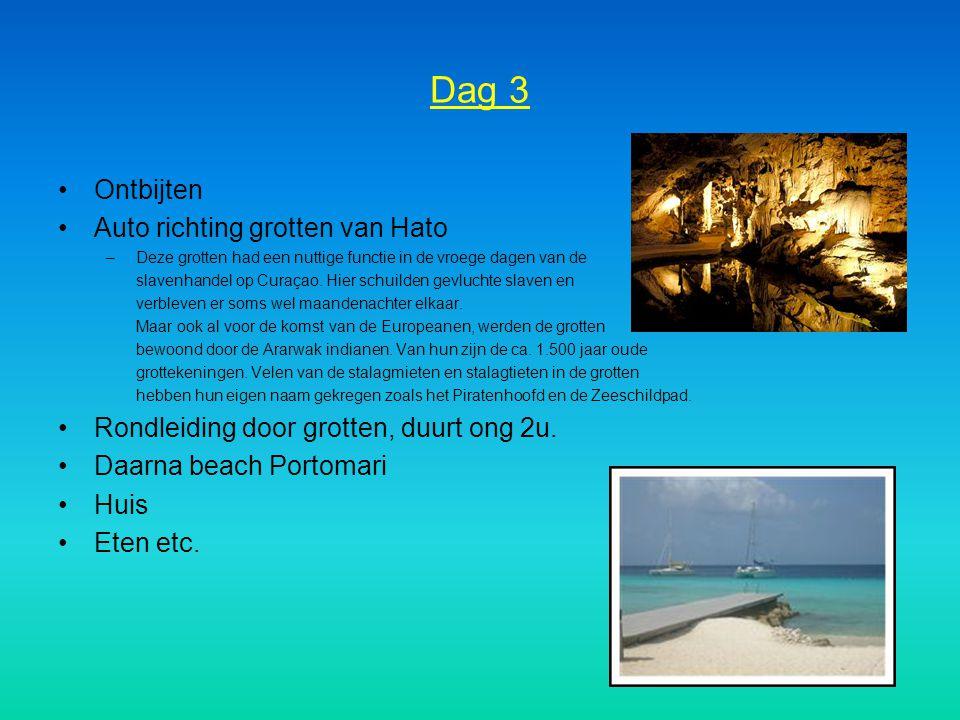 Dag 3 Ontbijten Auto richting grotten van Hato –Deze grotten had een nuttige functie in de vroege dagen van de slavenhandel op Curaçao. Hier schuilden