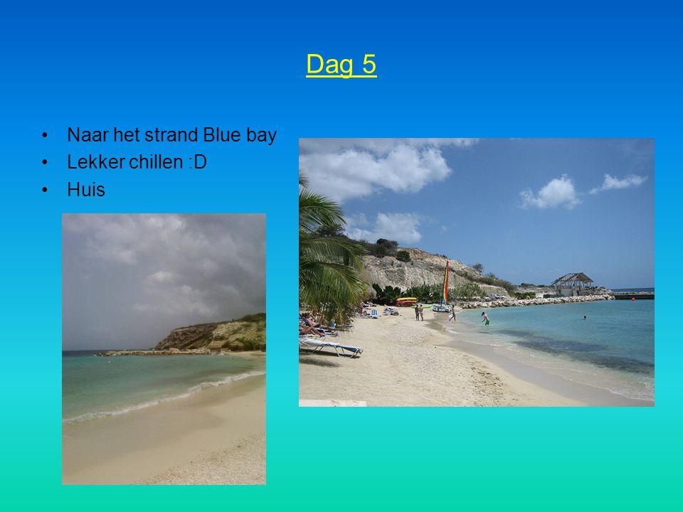 Dag 5 Naar het strand Blue bay Lekker chillen :D Huis