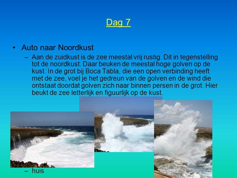 Dag 7 Auto naar Noordkust –Aan de zuidkust is de zee meestal vrij rustig. Dit in tegenstelling tot de noordkust. Daar beuken de meestal hoge golven op