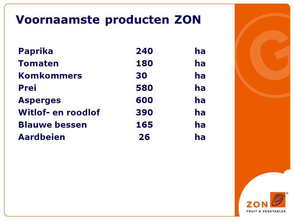 Voornaamste producten ZON Paprika240ha Tomaten 180 ha Komkommers30ha Prei580 ha Asperges 600ha Witlof- en roodlof 390 ha Blauwe bessen165 ha Aardbeien 26ha