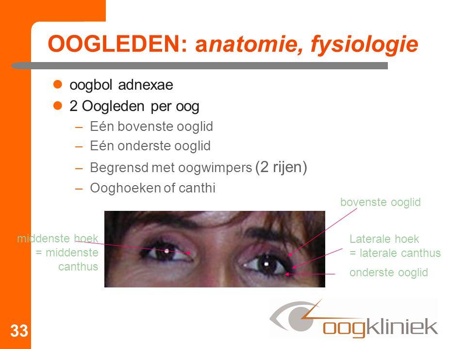 OOGLEDEN: anatomie, fysiologie oogbol adnexae 2 Oogleden per oog –Eén bovenste ooglid –Eén onderste ooglid –Begrensd met oogwimpers (2 rijen) –Ooghoeken of canthi 33 bovenste ooglid onderste ooglid Laterale hoek = laterale canthus middenste hoek = middenste canthus