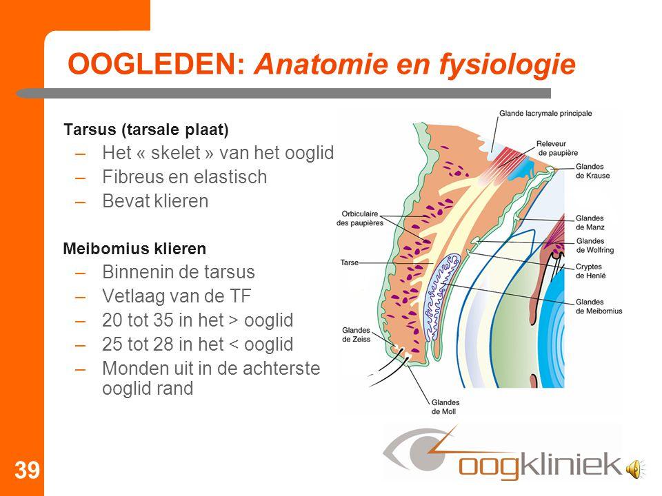 OOGLEDEN: Anatomie en fysiologie Tarsus (tarsale plaat) –Het « skelet » van het ooglid –Fibreus en elastisch –Bevat klieren Meibomius klieren –Binneni