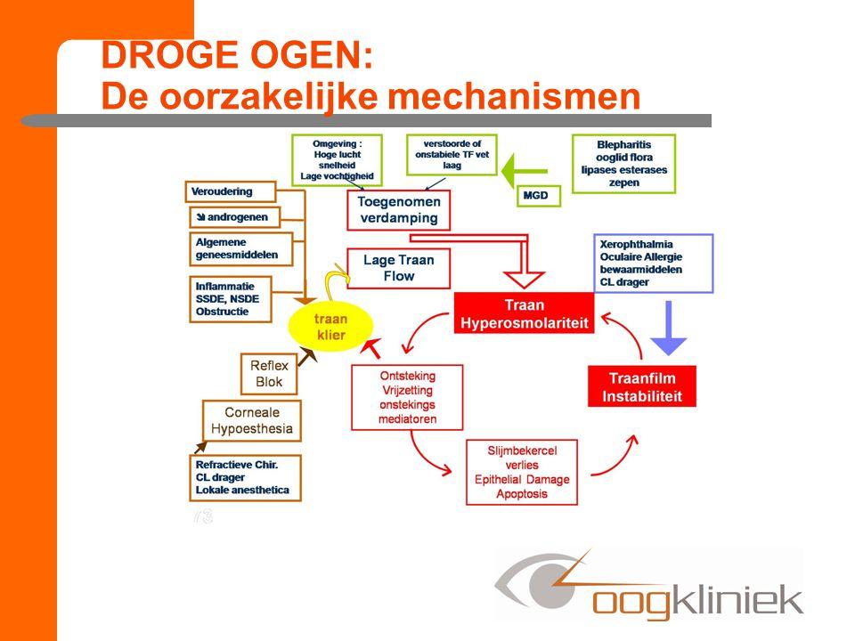 DROGE OGEN: De oorzakelijke mechanismen