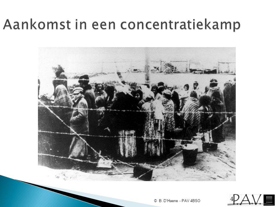 Aankomst in een concentratiekamp © B. D'Haene - PAV 4BSO