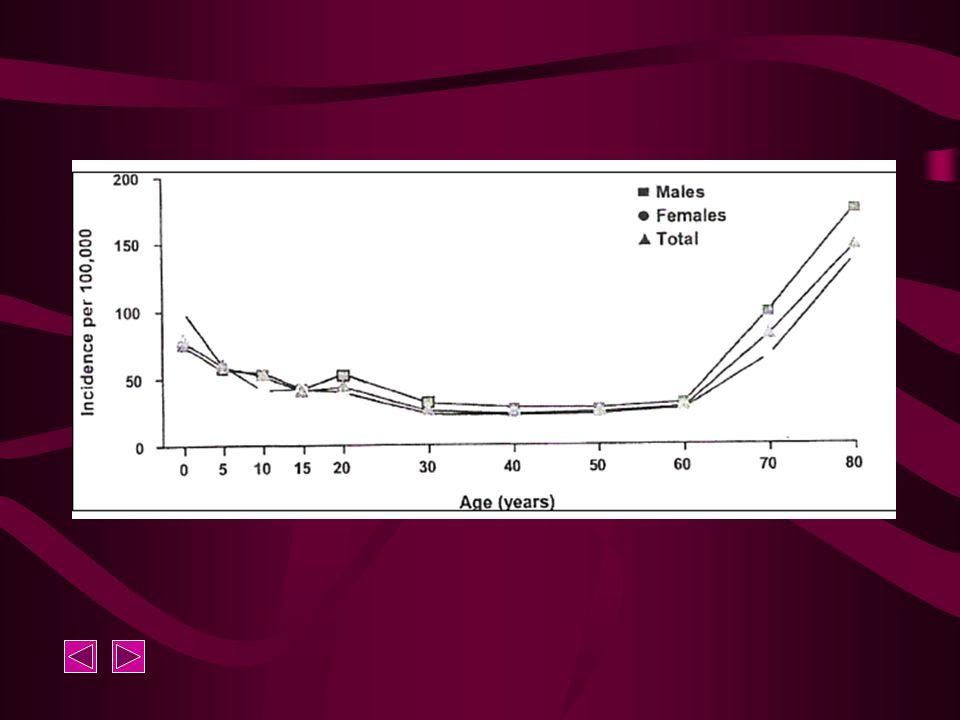 B. Etiologie 1.Acute symptomatische insulten 2.Chronische epilepsie Idiopathische epilepsie