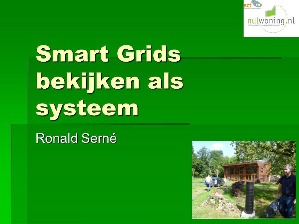 Smart Grids bekijken als systeem Ronald Serné