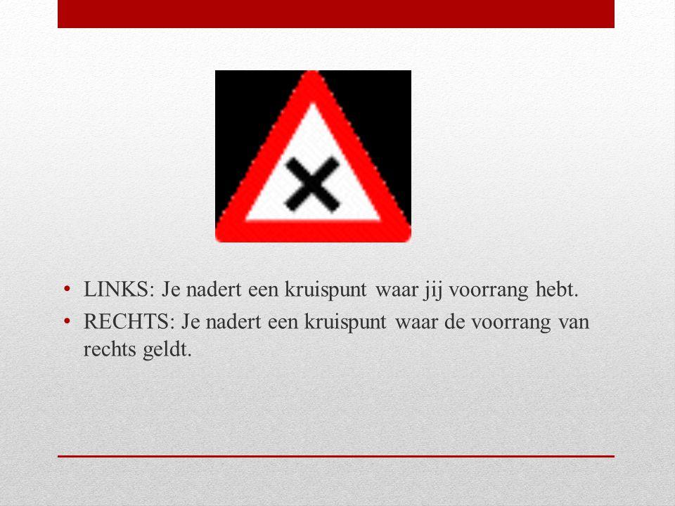 LINKS: Fietsers moeten verplicht op dit fietspad rijden.
