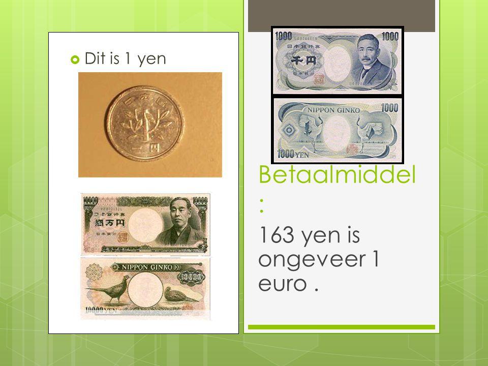  Dit is 1 yen Betaalmiddel : 163 yen is ongeveer 1 euro.