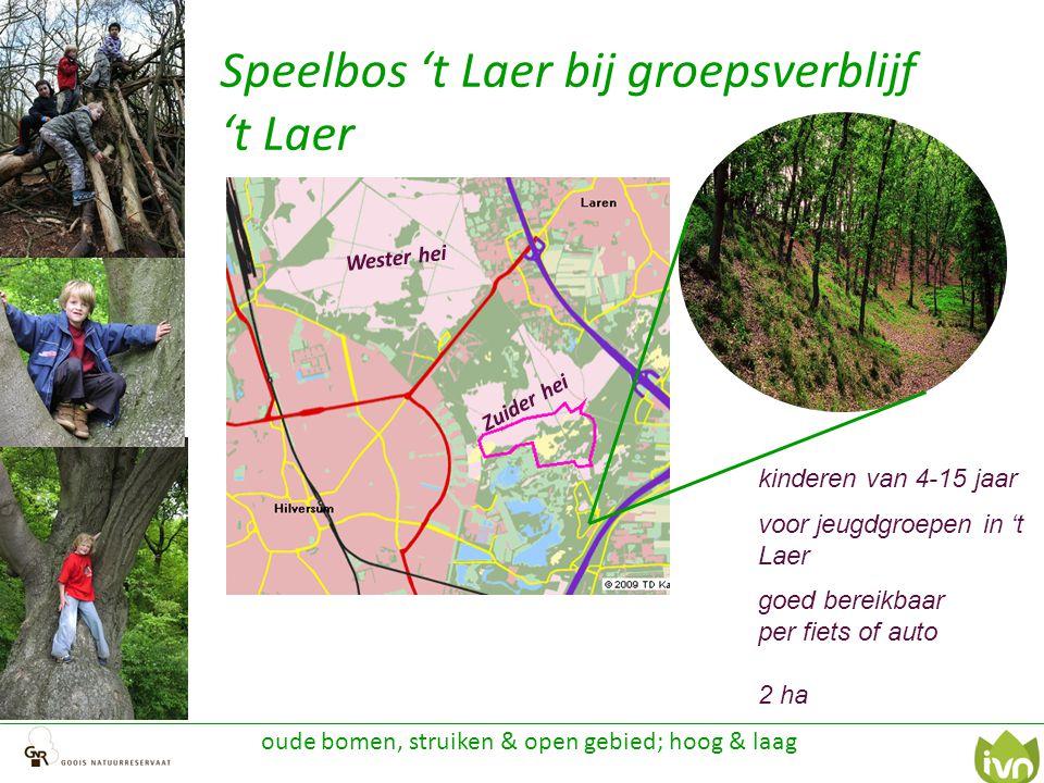 Speelbos 't Laer bij groepsverblijf 't Laer oude bomen, struiken & open gebied; hoog & laag Zuider hei Wester hei kinderen van 4-15 jaar voor jeugdgro