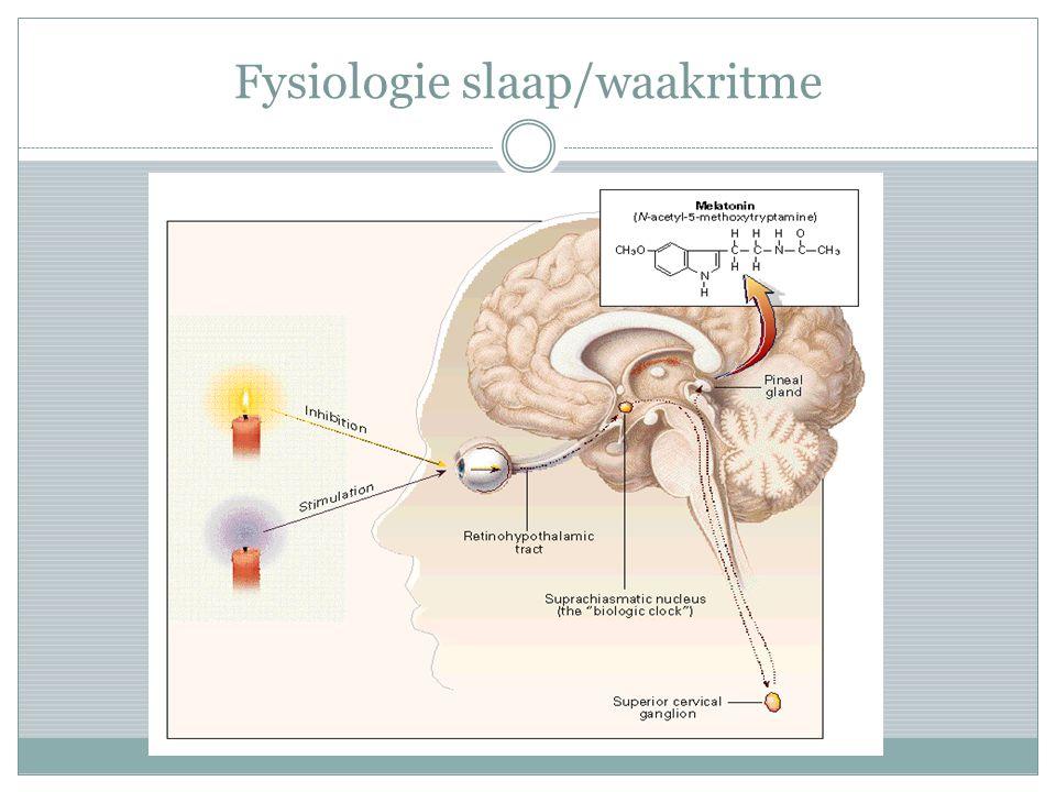 narcolepsie Onderzoeken  Polysomnografie; MSLT (multiple sleep latency test)  (HLA-typering): HLA DQ B1 *0602  Hypocretinebepaling in lumbaal vocht Behandeling  Amfetamine: rilatine, modafinil  SSRI (kataplexie)