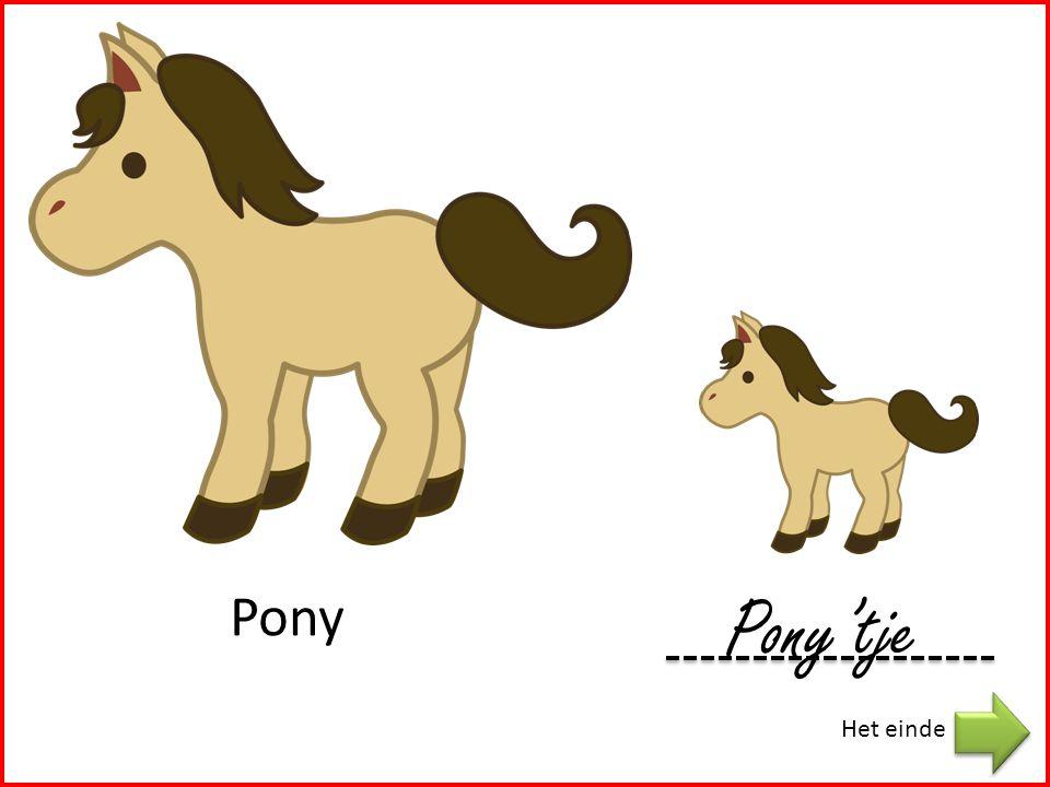 Pony Pony'tje Het einde