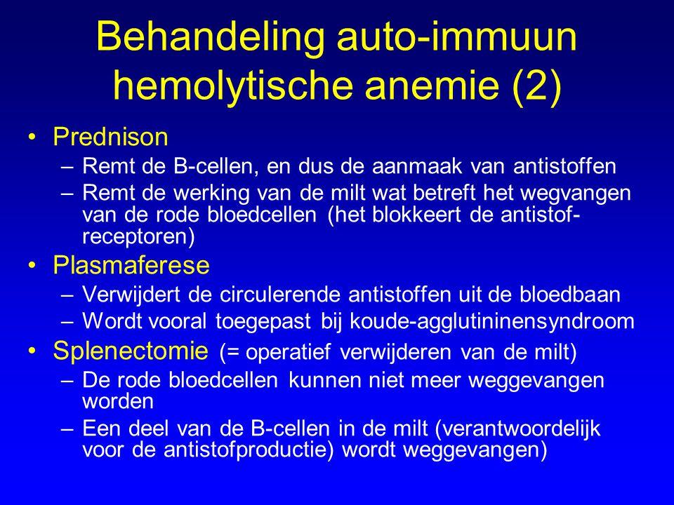 Behandeling auto-immuun hemolytische anemie (2) Prednison –Remt de B-cellen, en dus de aanmaak van antistoffen –Remt de werking van de milt wat betref