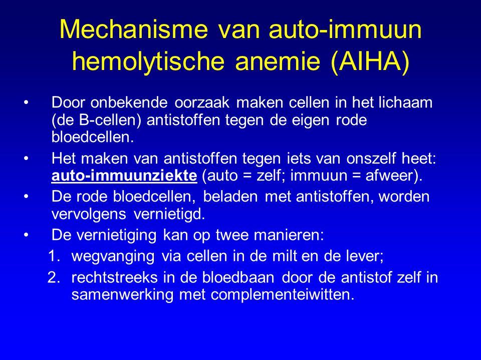 Mechanisme van auto-immuun hemolytische anemie (AIHA) Door onbekende oorzaak maken cellen in het lichaam (de B-cellen) antistoffen tegen de eigen rode