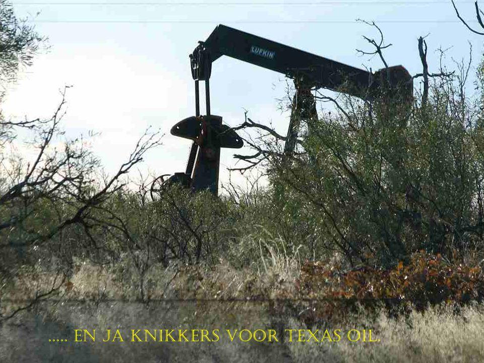 ..... En Ja knikkers voor Texas Oil.